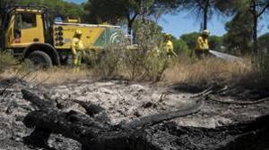 Efectivos del Infoca durante los trabajos de extinción del incendio forestal de Moguer
