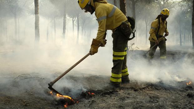 Bomberos trabajan sobre las llamas del incendio de Moguer