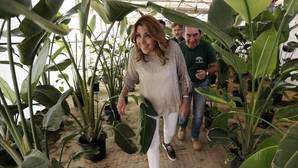 La presidenta de la Junta en el semillero de San Jerónimo de Sevilla el miércoles