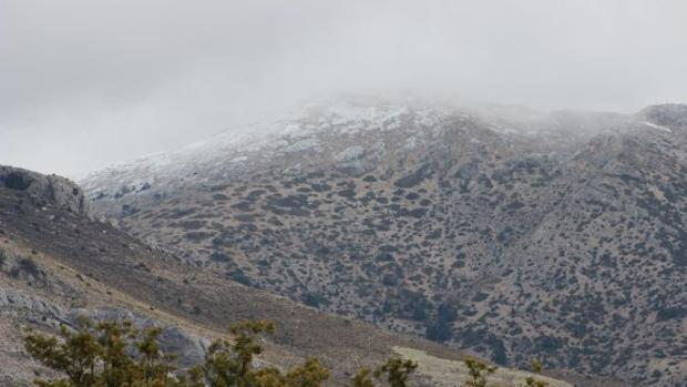El suceso ha tenido lugar en plena Sierra de Las Nieves