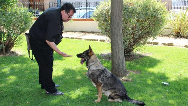 Laika, la perra especialista en explosivos, acogida por un párroco de la Sierra de Ronda
