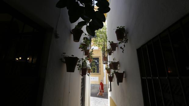 Calleja Barrera, incluida en el Festival de las Callejas