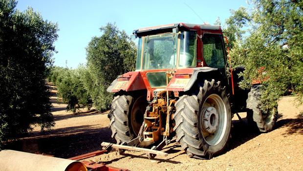 Imagen de un tractor en una finca