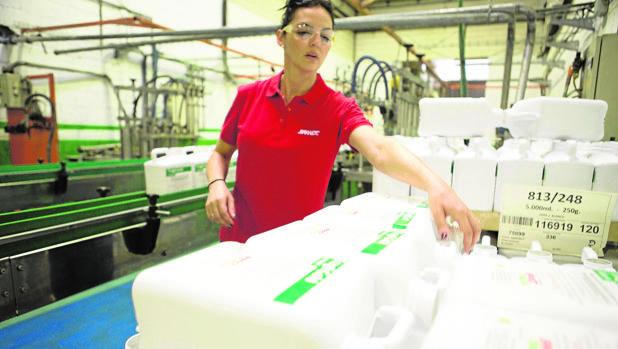 Trabajo en la fábrica de Brandt Europe