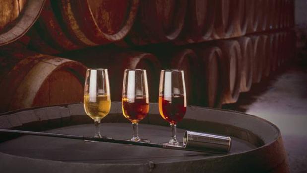 Varios vinos de una bodega