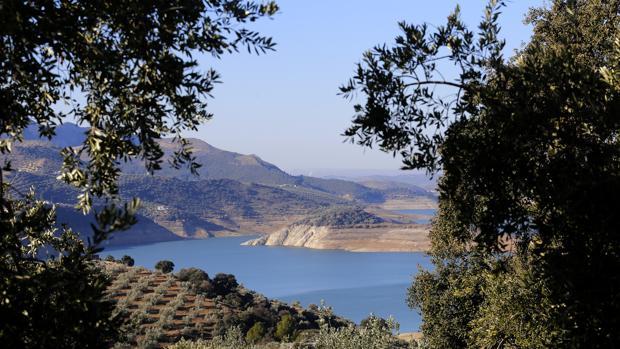 Panorámica del pantano de Iznájar hace unas semanas rodeado de cultivos del olivar