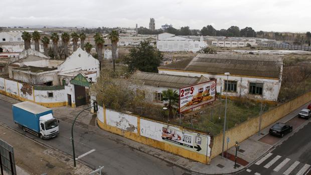 Terrenos de Chinales donde Kronos Homes quiere ejecutar una gran promoción de viviendas