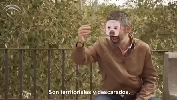 Una de las imágenes de la campaña de la Junta de Andalucía
