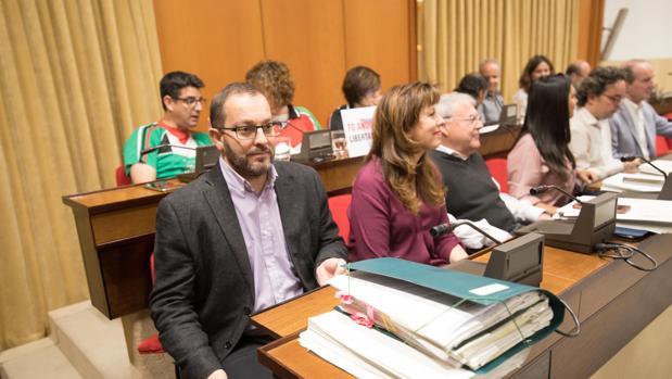 Miembros de IU, PSOE y Ganemos, hoy, en el pleno