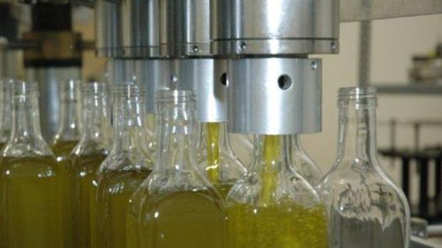 Proceso de embotellado de aceite de oliva en una fábrica de Jaén