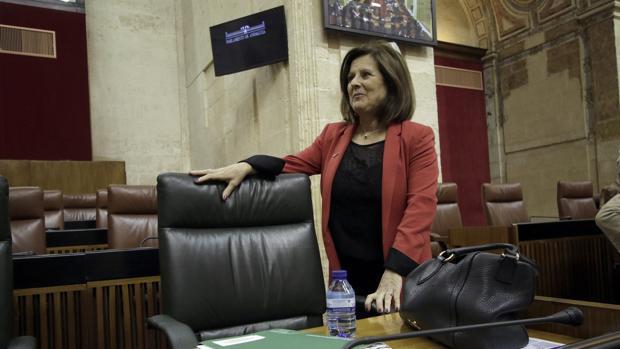 La consejera de Igualdad, María José Sánchez Rubio, en el Parlamento