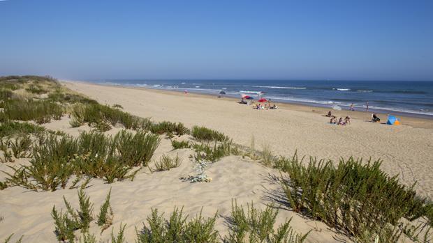 Playa Flecha del Rompido