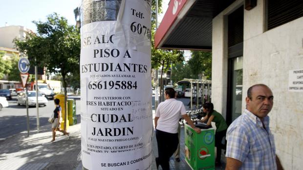 Ciudad jard n la meca de los estudiantes para compartir for Pisos estudiantes almeria