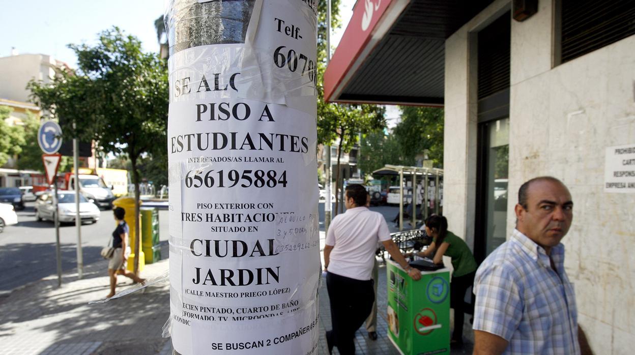 Ciudad jard n la meca de los estudiantes para compartir piso en c rdoba - Pisos ciudad jardin ...