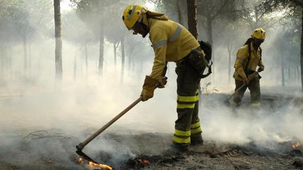 Bomberos forestales de la Junta apagando el último incendio en Doñana