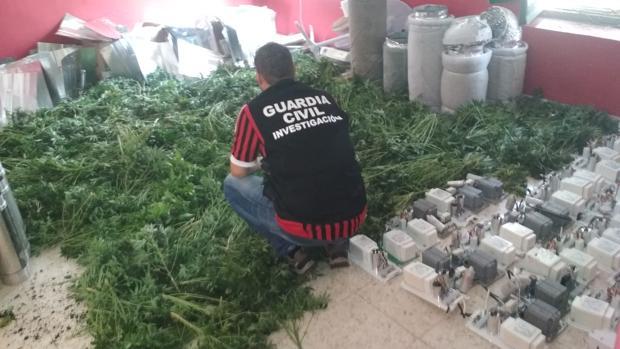 Un agente de la guardia civil durante la «Operación Hierbabuena»
