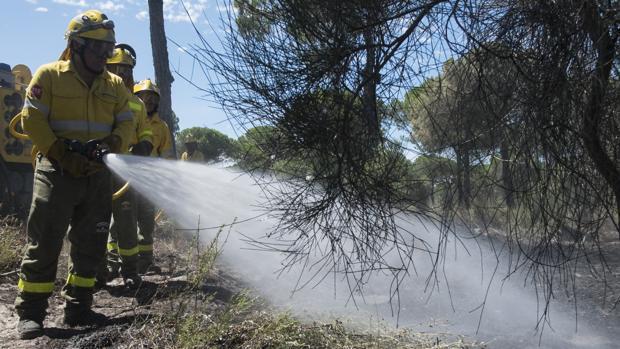 Varios bomberos sofocan un incendio en Huelva