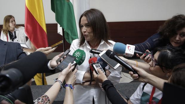 Lina Álvarez, tras su toma de posesión como consejera andaluza el pasado mes de junio