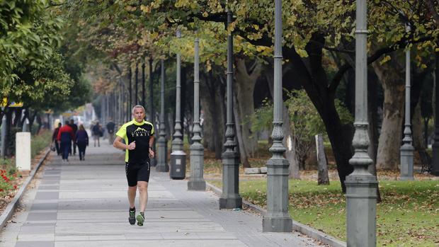 Una propuesta ciudadana planteó sin éxito que la avenida de Vallellano pasara a ser de las Fuerzas Armadas