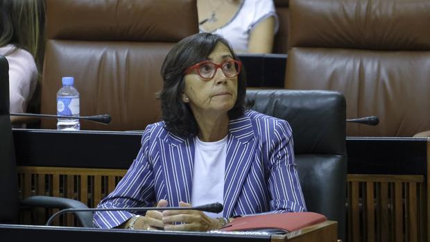 Rosa Aguilar, consejera de Justicia e Interior, preside el patronato de la Fundación Mediara