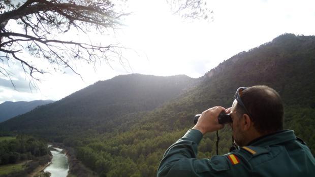 Un agente de la Guardia Civil vigila en un paraje de un parque natural de Jaén