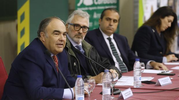 Antonio Luque, presidente de Dcoop, en la Jornada Técnica del Olivar de Asaja