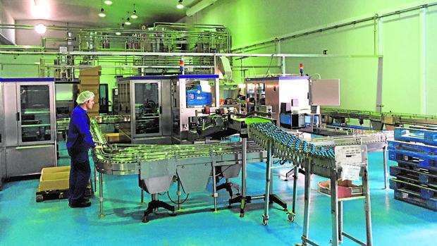 Línea de envasado de la empresa Arteoliva en las instalaciones del Garrotal