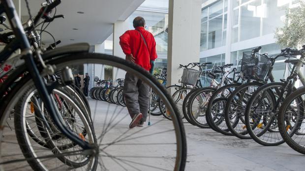 Muestra de bicicletas robadas recuperadas por la Policía Local sevillana