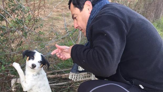 Juanma, durante el rescate al perro atrapado en un lazo de furtivos