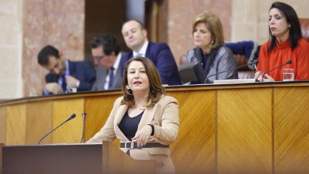 La portavoz parlamentaria del PP, hoy durante la sesión de investidura