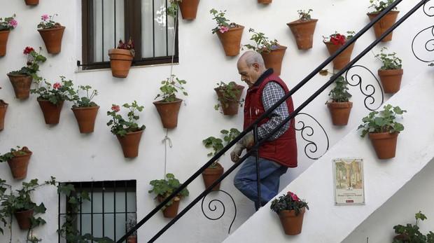 El dueño de un patio del Alcázar Viejo baja unas escaleras