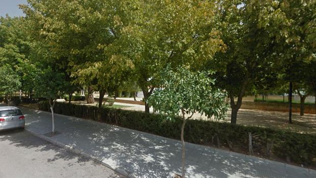 Parque onubense en la localidad de Palma del Condado