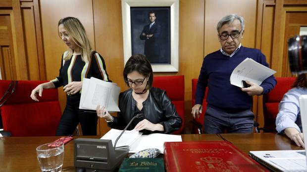 La alcaldesa de Córdoba, Isabel Ambrosio, en un Pleno municipal