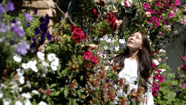 Una turista asiática visita un patio cordobés durante la edición del año pasado