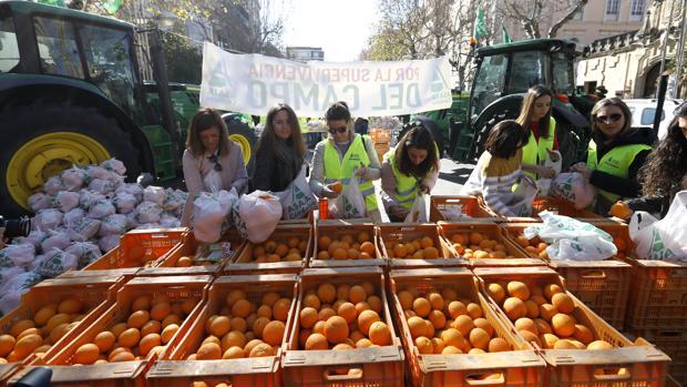 Protesta de Asaja por la caída de los prcecios de la naranja