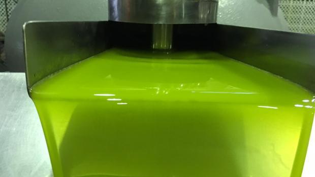 Aceite de oliva producido en Jaén