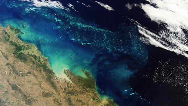 El calentamiento global ha alterado el plancton, el pulmón del planeta en los océanos