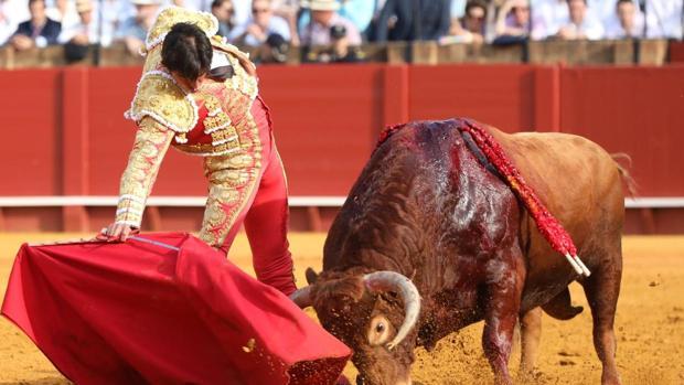 Miguel Ángel Perera en la faena del toro premiado con la vuelta al ruedo y por Los 40