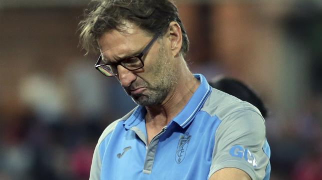 Tony Adams, técnico del Granada CF