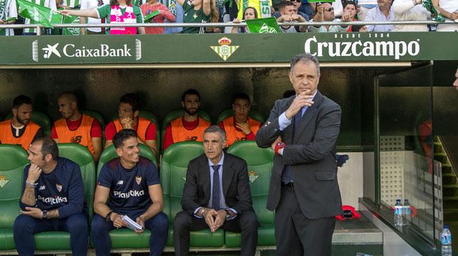 El entrenador Joaquín Caparrós, en el Benito Villamarín (foto: Juan José Úbeda)