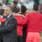 Los jugadores sevillistan celebran por detrás de Caparrós el 1-2 de Kjaer en el derbi