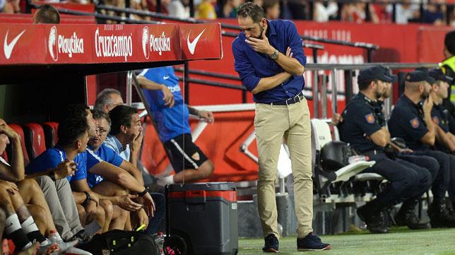 Pablo Machín dialoga con el banquillo durante el Sevilla-Getafe (Foto: AFP).