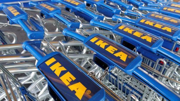 Ikea vender sus productos a trav s de internet en toda - Plantas ikea naturales ...