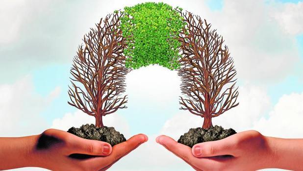 La economía colaborativa echa raíces sin reglas del juego