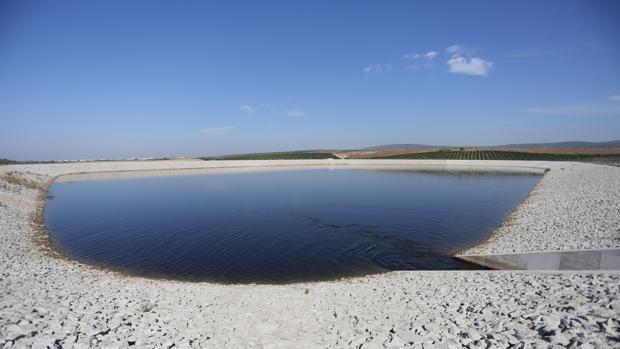 La falta de lluvia deja a muchos regantes sin agua