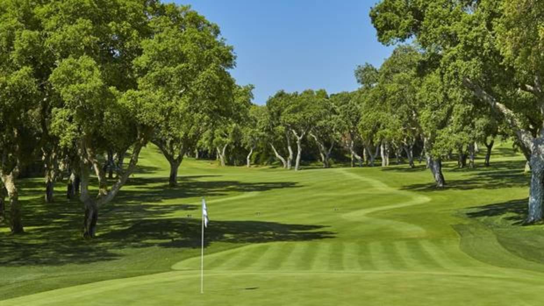Los socios del club valderrama compran el campo de golf - Socios del sevilla 2017 ...
