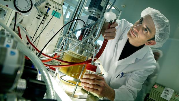 Entre los objetivos del proyecto Saludolivar está mejorar la calidad de los aceites producidos