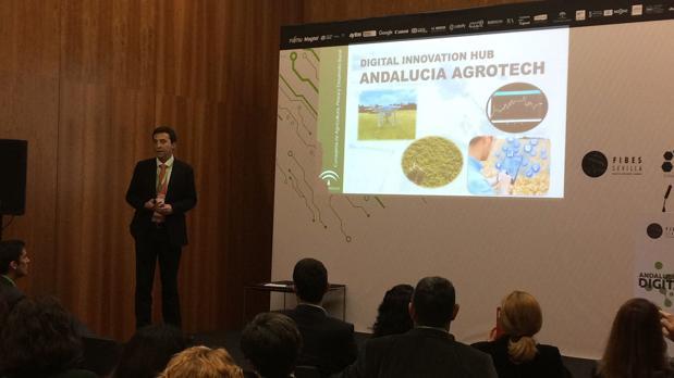 El viceconsejero de Agricultura, Pesca y Desarrollo Rural, Ricardo Domínguez, ayer en ADW