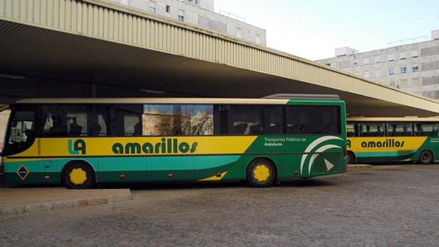 La concesión de Los Amarillos requiere una flota de sesenta vehículos