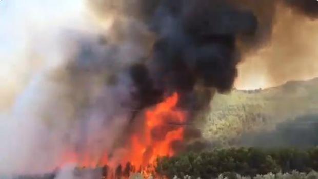 Captura de pantalla de un vídeo subido a Twitter del incendio en Jaén